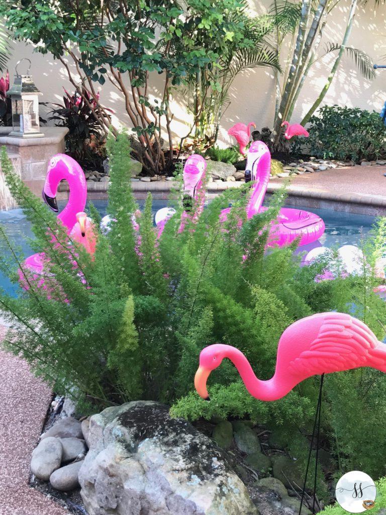 Flamingle – Savvy Snowbirds