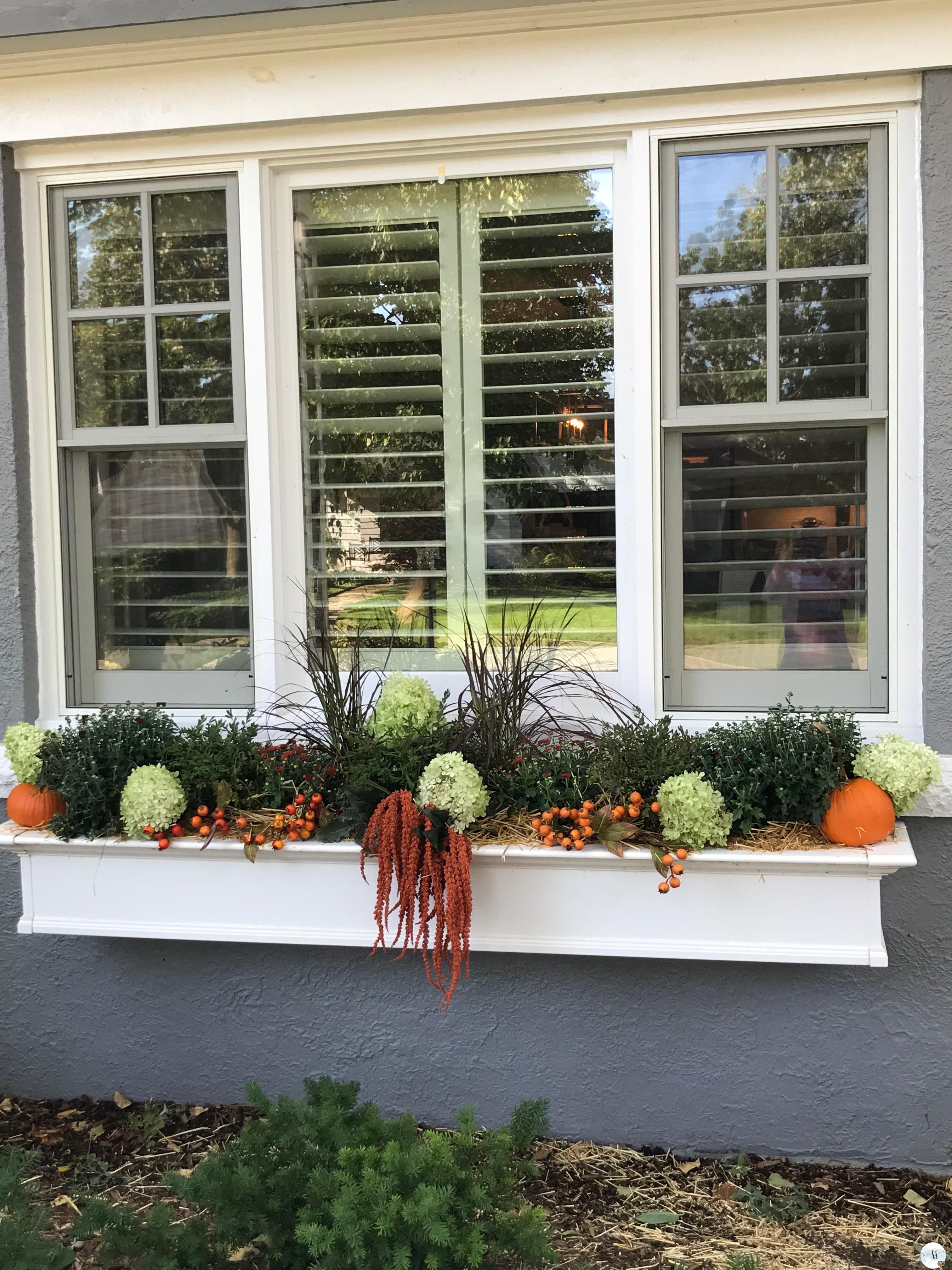 Fall decor, happy thanksgiving, mums, pumpkins, outdoor decor, better home and garden, garden decor