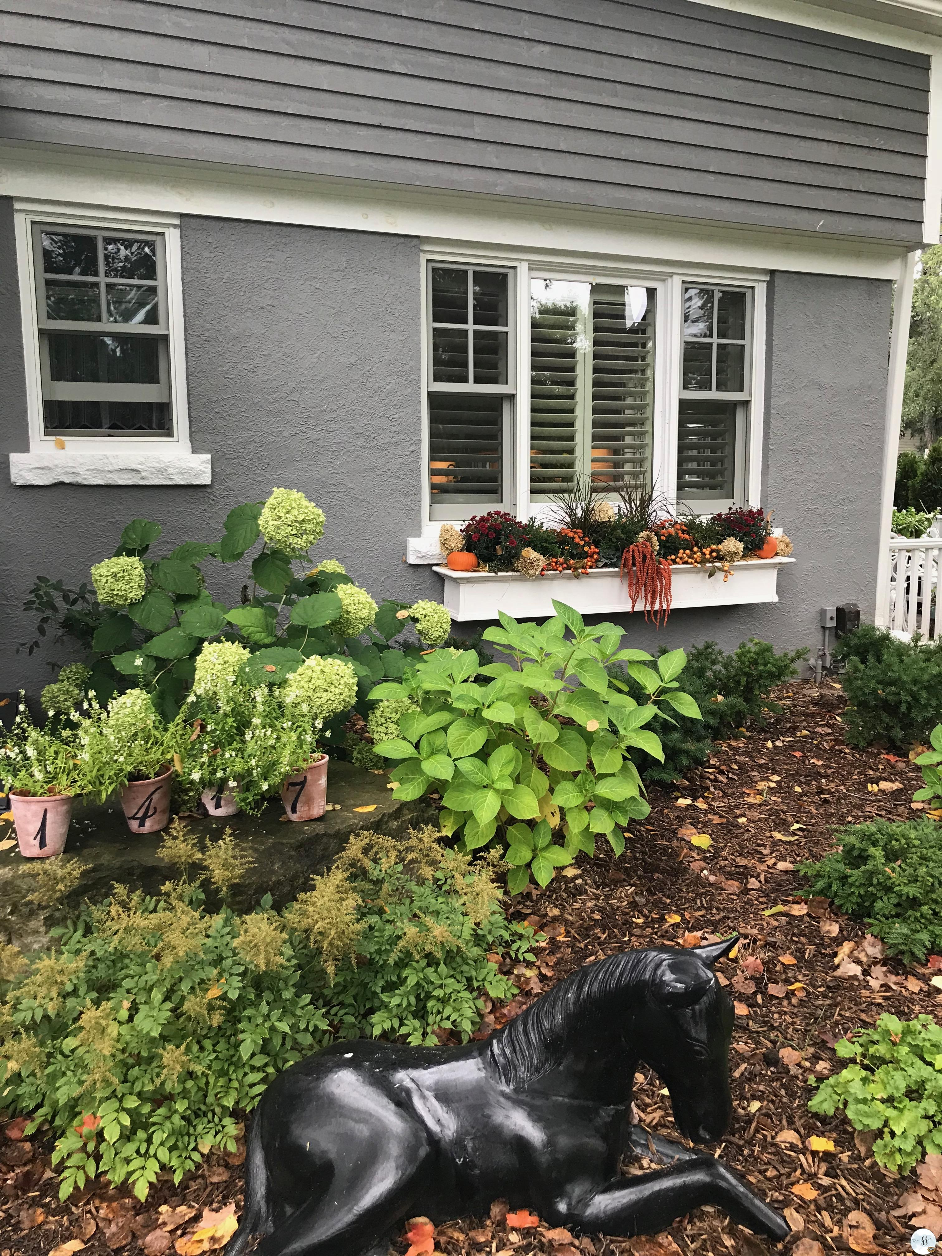 fall decor, fall gardens, fall window boxes, fall plants,